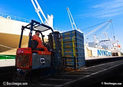36 Port of Hueneme_4819_alt