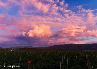 44 Ventura County Scenics