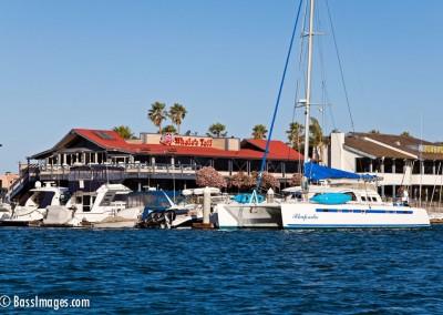 BoatParade_5344