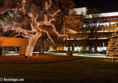 Civic Arts Plaza Xmas-1