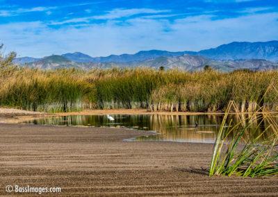 Santa Clara estuary low water-1