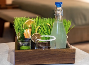 Newest Wellness Welcome? This Wheatgrass Margarita at Grand Velas Los Cabos
