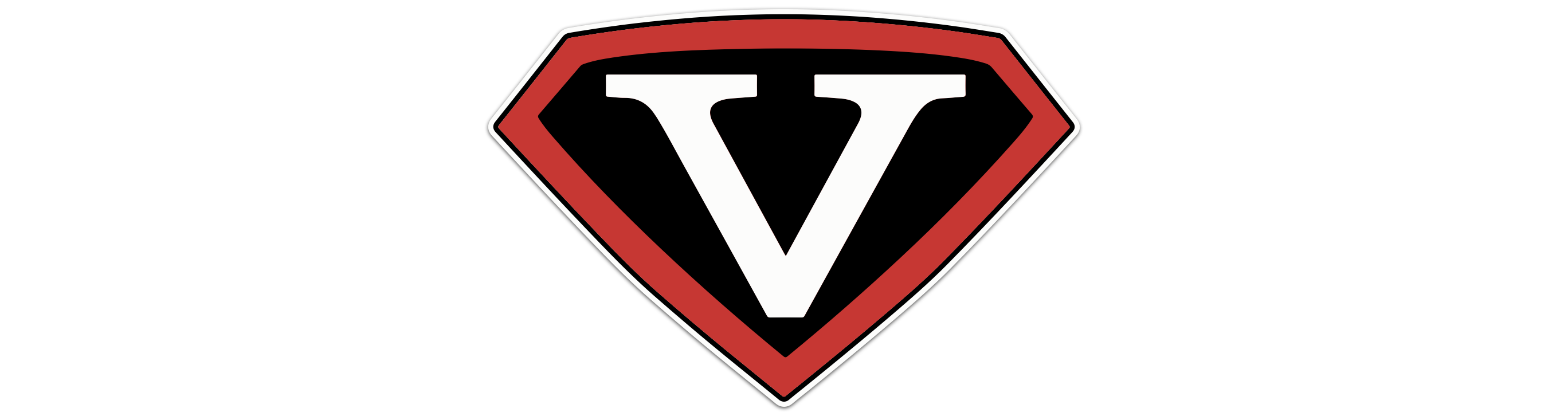 Team Vision Worldwide Logo