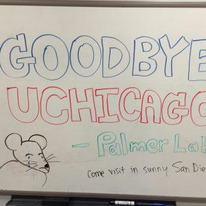 Farewell UChicago! - Dec 2015