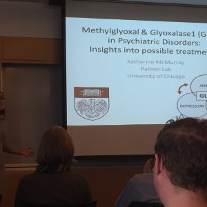 Kat's Thesis Defense  - November 2015