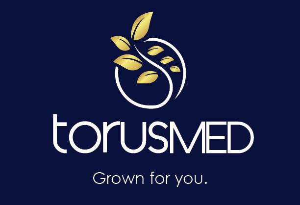 1Cropped image torus logo
