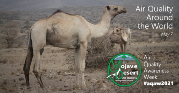 Two camels mosey about their day in Serengeti National Park in Africa. For AQAW2021 Day 5, we learn that air quality affects different species in different regions differently throughout the world.