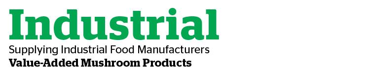 Industrial head-01