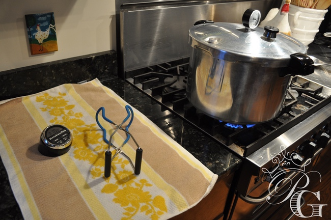 pressure-canning-stove canning venison