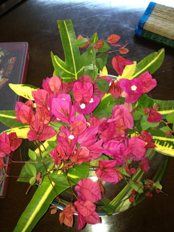 Flowers in our hotel room Vishakapatnam