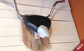 White Nose Game Trophy