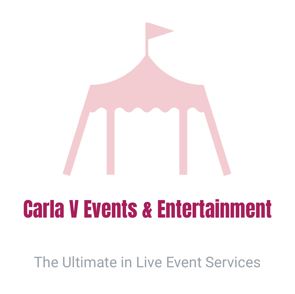 Live Entertainment and DJ Services