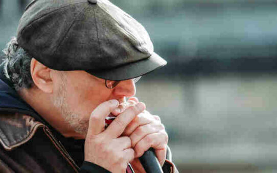 Re-Discovering Harmonica