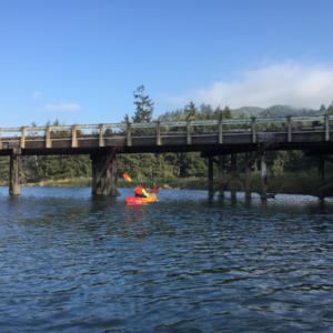 3 Hour Siletz Bay Private Kayak Tour