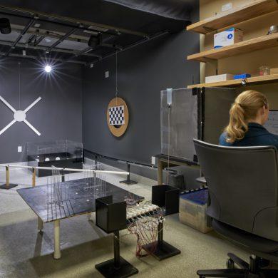 UC Berkeley Foster Lab