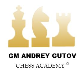 Welcome to Grandmaster Andrey Gutov Chess Academy