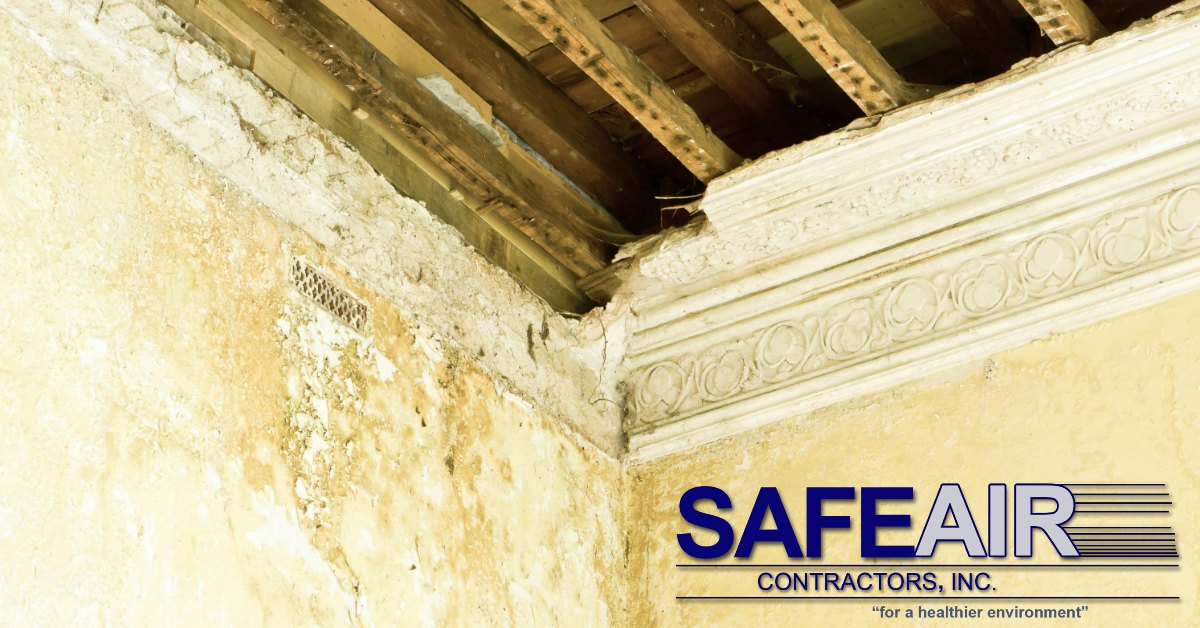 How does Asbestos Plaster Removal work and who would I contact?