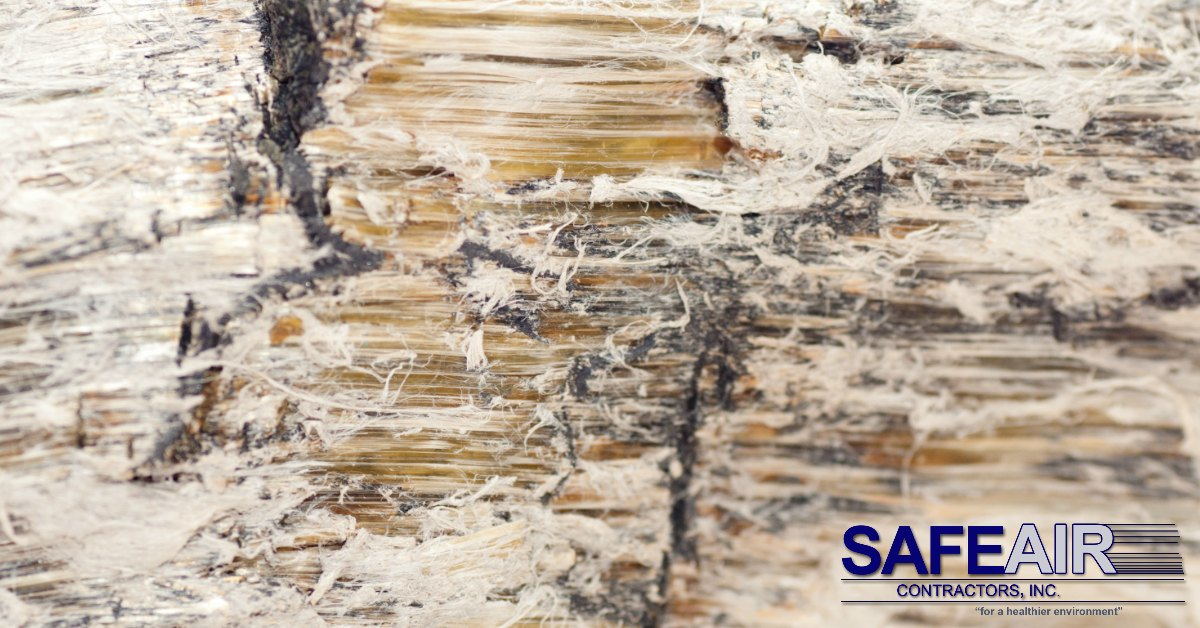 What is Vermiculite and Why You Should Be Aware of Its Potential Impact