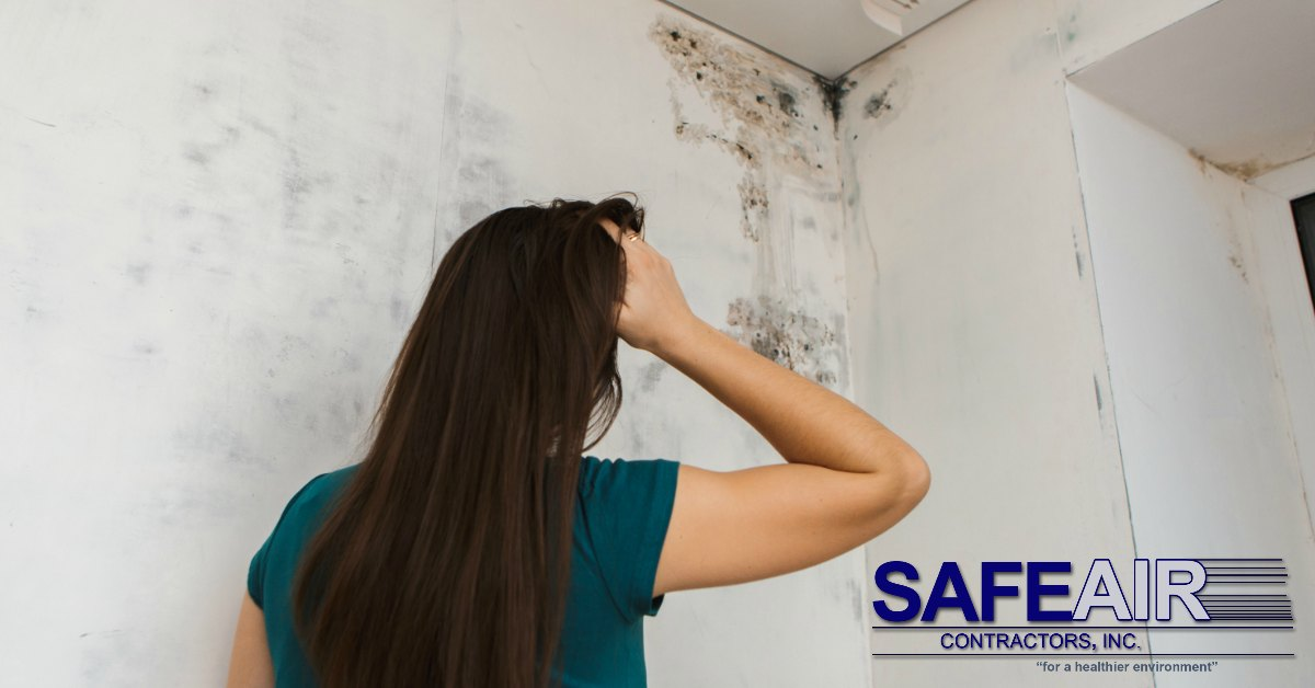 Ohio black mold removal