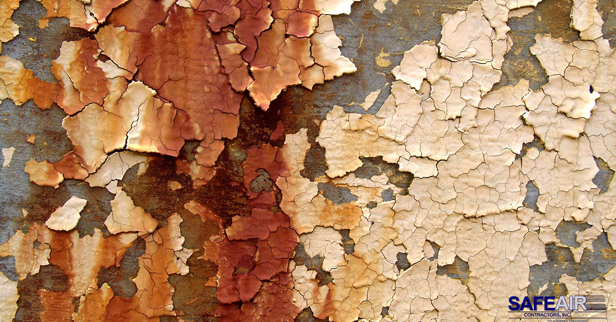 lead paint chips