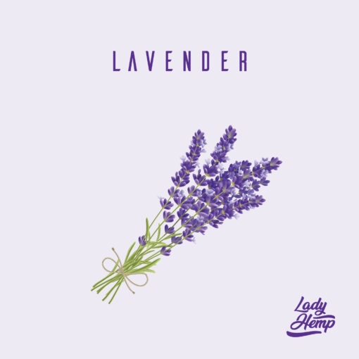lavender by lady hemp