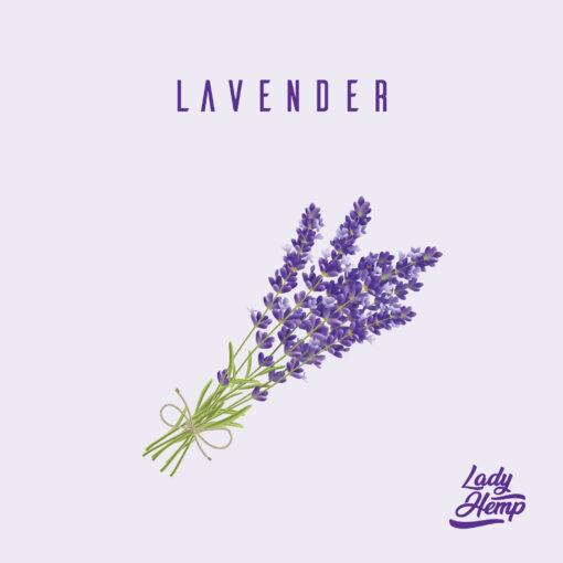 lavender by lady hemp