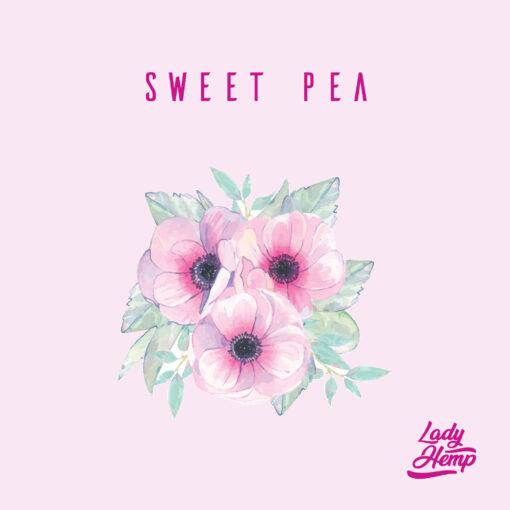 sweet pea by lady hemp