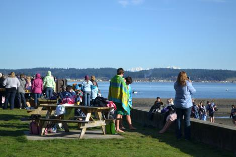 New Year's Day Polar Bear Plunge at Double Bluff Park and Beach
