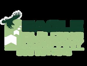 Eagle building logo