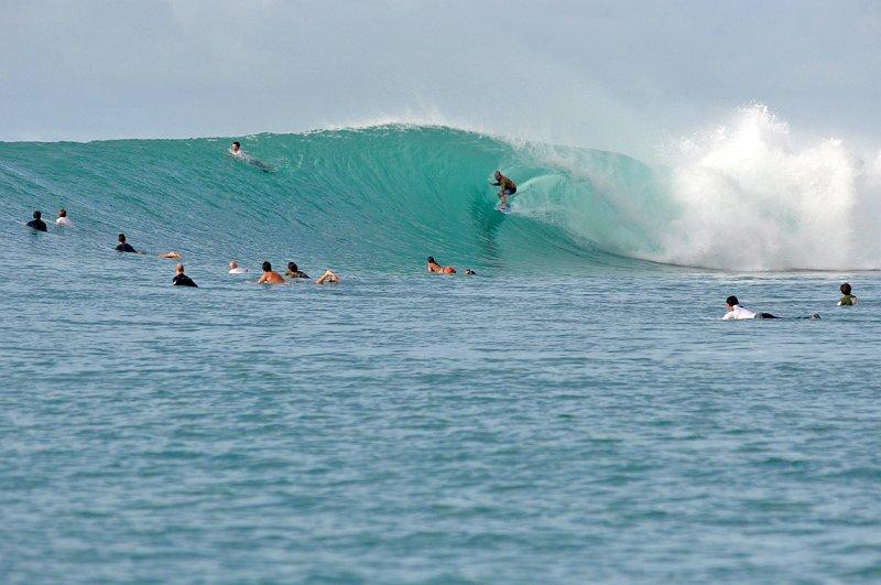 Indo 2012 - Mentawais 13