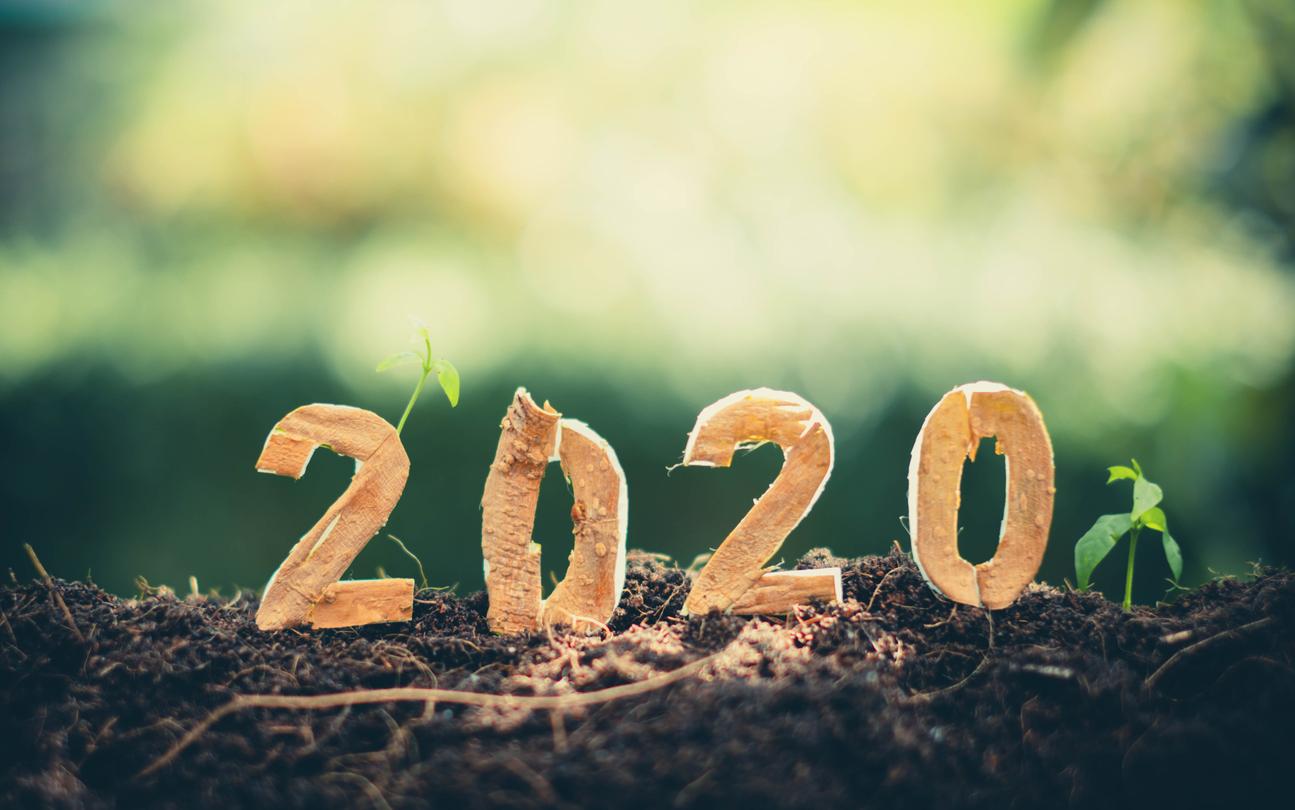 Power Word 2020