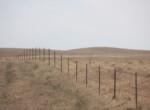 JR Cross fence in the fall