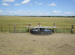JR- fenceline tank in the summer