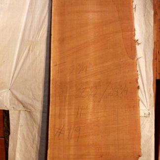 Western Red Cedar 2.75 in X 31 in X 11'