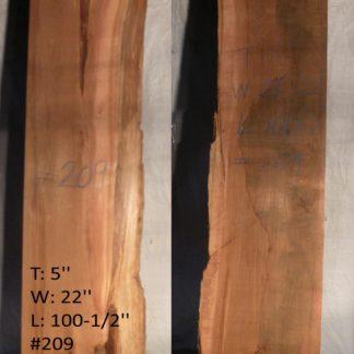 Western Red Cedar 5 in X 22 in X 8'