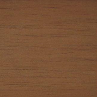 Toona australis