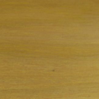 Cassia emarginata