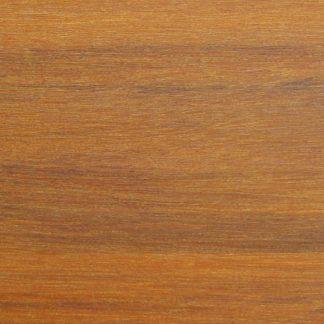 Caesalpinia echinata - Syn. Guilandina echinata - Syn. Paubrasilia echinata
