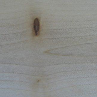 Érable Rouge - Plaine - Acer rubrum - Soft Maple