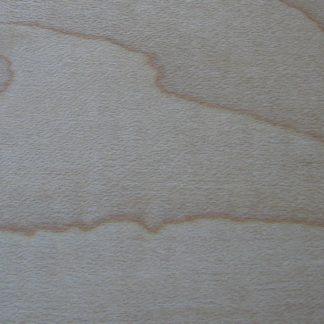 Érable à sucre - Acer saccharum - Hard Maple