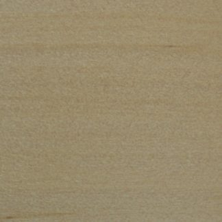 Araucaria hunsteinii