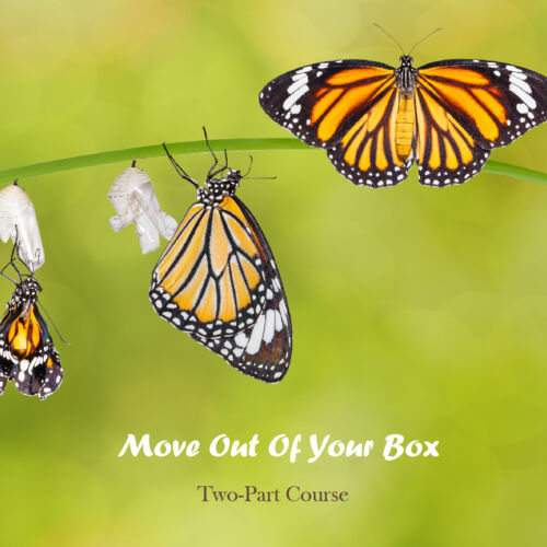 Move Out Of Your Box | Expand with Julius and Xpnsion Network