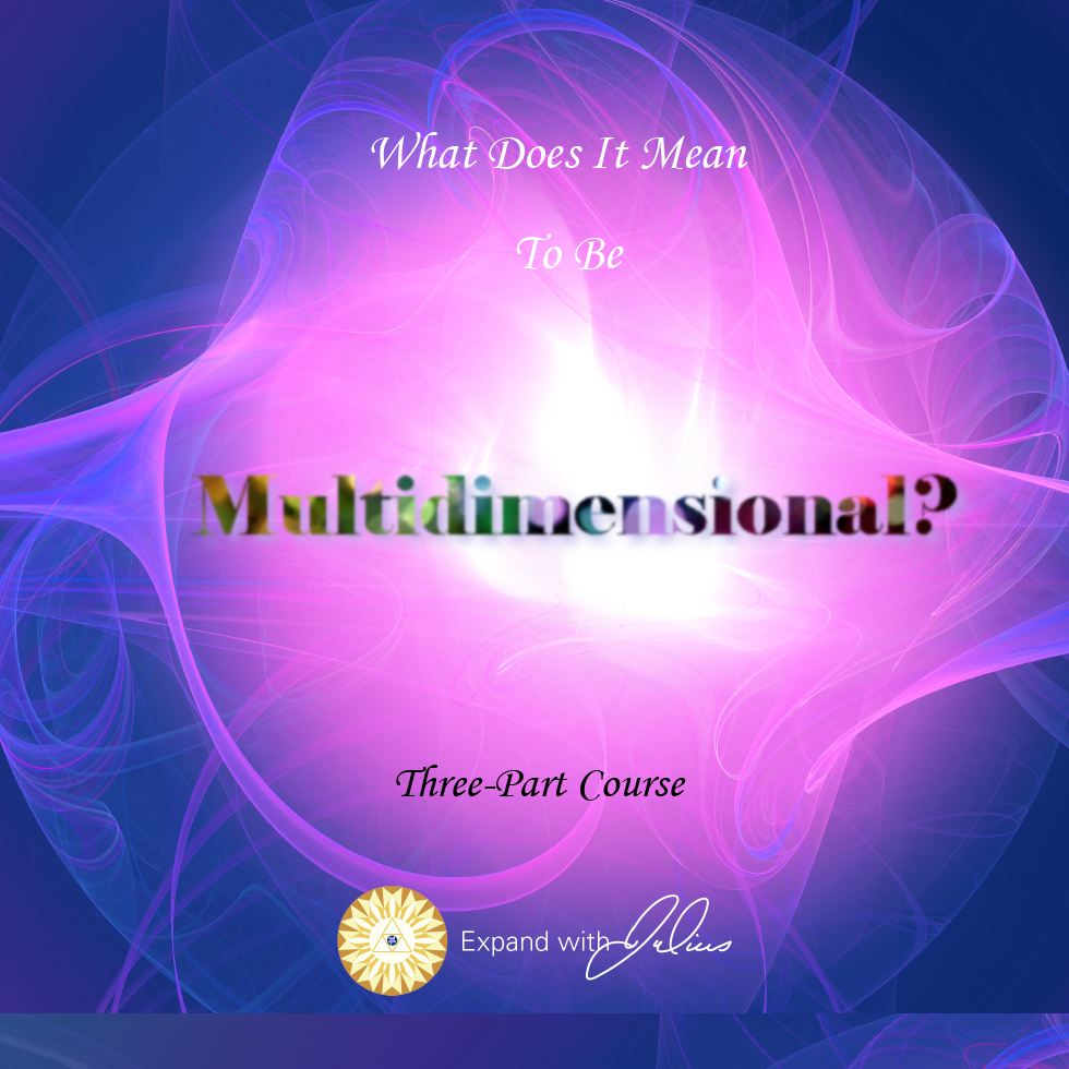 What Does It Mean To Be Multi-Dimensional?   Expand with Julius and Xpnsion Network