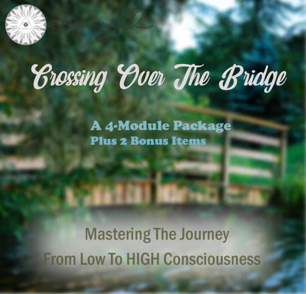 Crossing Over the Bridge | Expand with Julius and Xpnsion Network