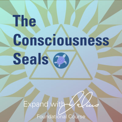 The Consciousness Seals (Foundation Class) | Expand with Julius and Xpnsion Network