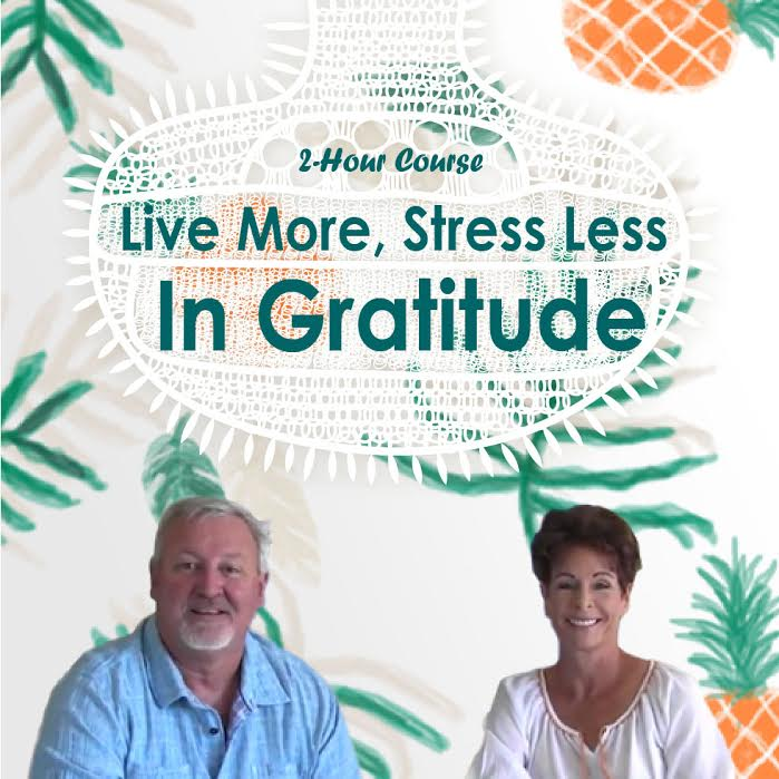 Live more, Stress less in Gratitude   Expand with Julius and Xpnsion Network