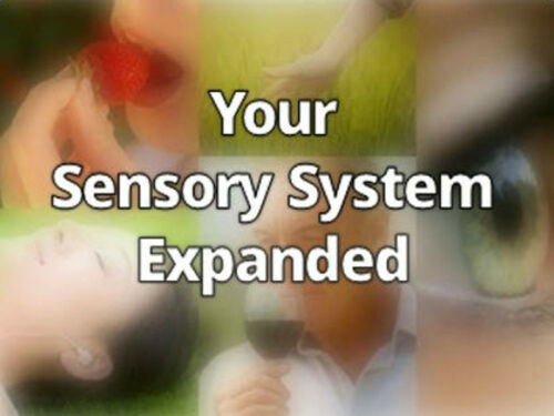 Your Sensory System Expanded   Expand with Julius and Xpnsion Network
