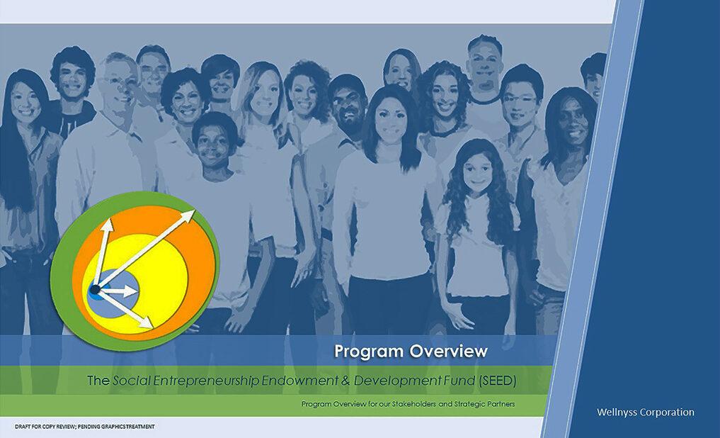 Strategic Plan for Social Endowment Program