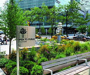 placemaking - green