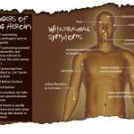 Squash the Secret infographic